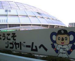 愛知の野球教室
