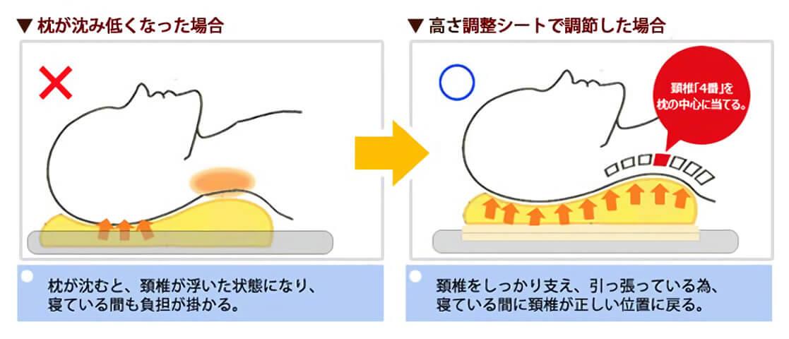 枕と首の関係性